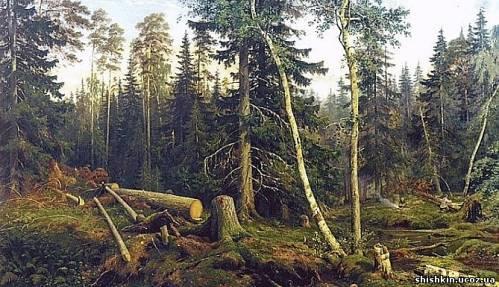 Картина Шишкина: Рубка леса.